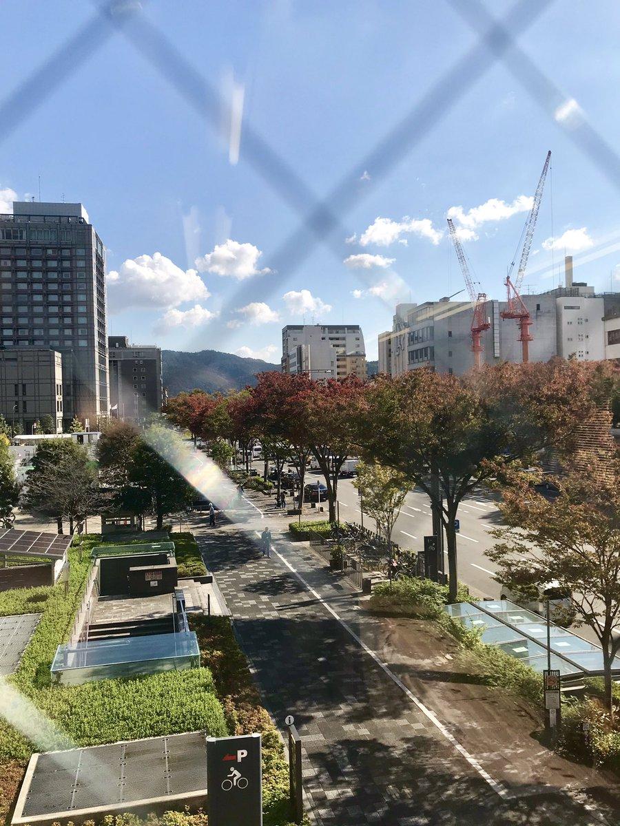 秋の紅葉 RAVISTA二条スタジオ 京都ヨガ IYC京都