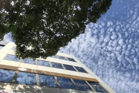 ラヴィスタと秋の空